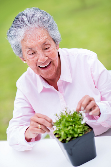 Can Gardening Help with Alzheimer's?